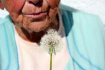 Pensionär_blomma